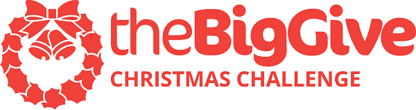 The Big Christmas Give